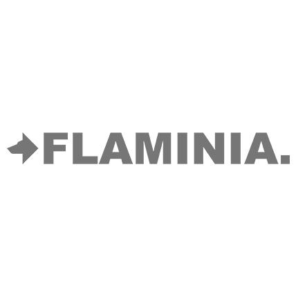Flaminia